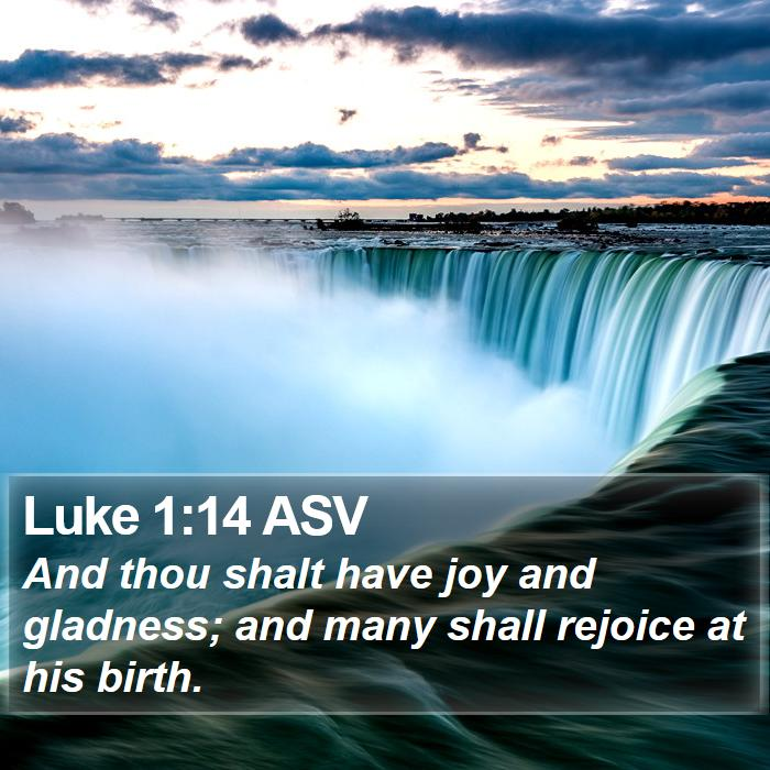 Luke 1:14 ASV - And thou shalt have joy and gladness; and many - Bible Verse Picture