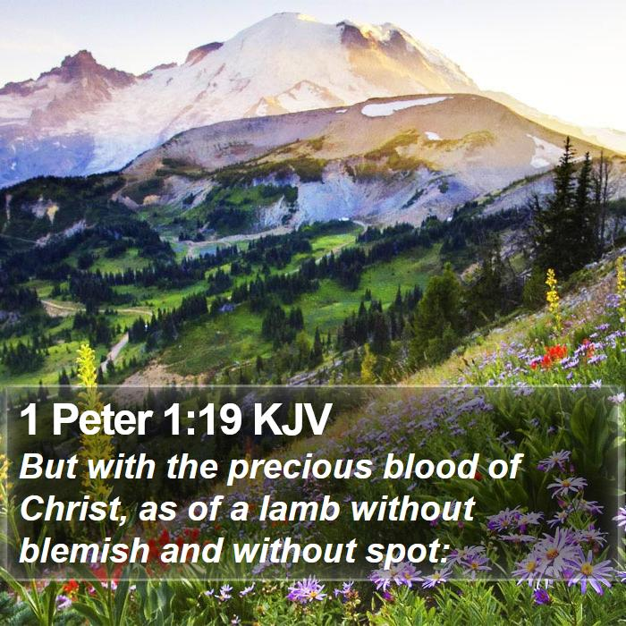 1 Peter 1:19 KJV - But with the precious blood of Christ, as of a - Bible Verse Picture