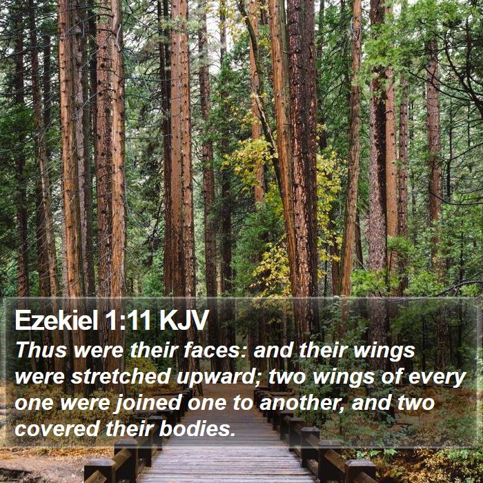 Ezekiel 1:11 KJV - Thus were their faces: and their wings were - Bible Verse Picture
