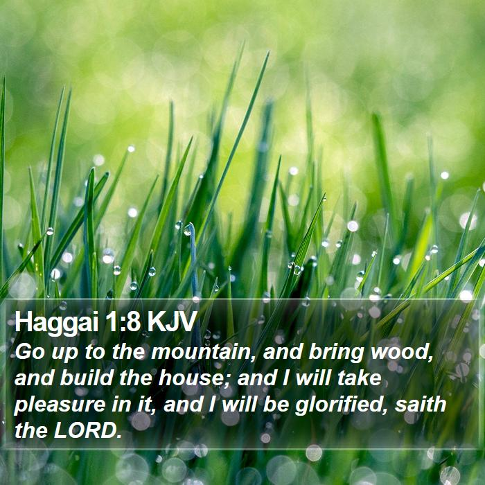Haggai 1:8 KJV - Go up to the mountain, and bring wood, and build - Bible Verse Picture