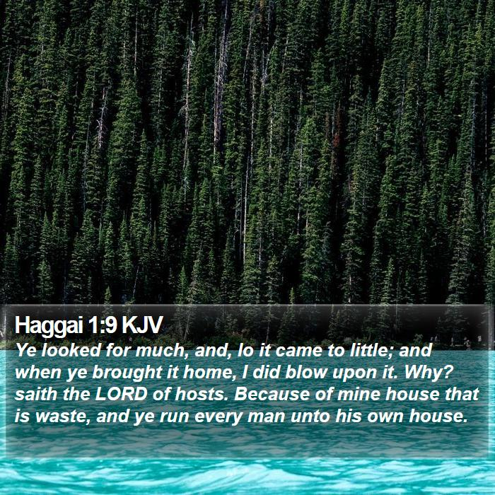 Haggai 1:9 KJV - Ye looked for much, and, lo it came to little; - Bible Verse Picture