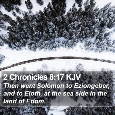 2 Chronicles 8:17 KJV Bible Verse Image