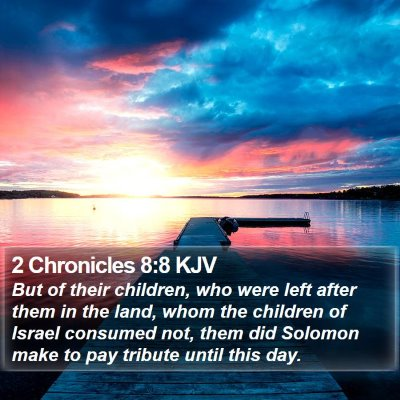 2 Chronicles 8:8 KJV Bible Verse Image